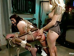 Coral aorta is a breasty dark brown hair milf who enjoys being aroused while she is fastened up in bondage devices. She likes having her face hole gagged with a ball as her beautiful domina takes advantage of her position. The sexy blonde milf Lorelei Lee likes satisfying her sex thrall with a transparent butt plug.
