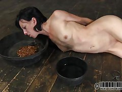 That chick has a bowl with water and one with food. Elise was a total doxy and now she's treated like one. Look at her how this chick struggles to eat and mostly of that food is on her face. What a impure whore, this chick merits greater quantity punishment for her manners. But first this chick needs some greater quantity humiliation, let's watch her play.